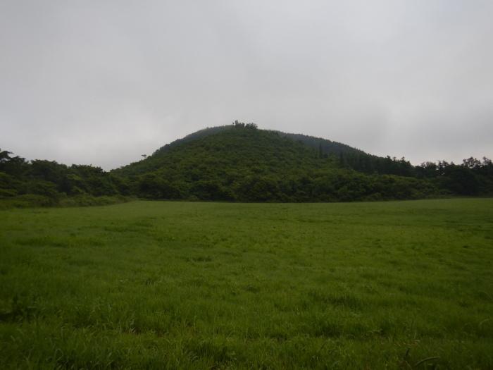 青麻山(36回目)・パラコース ~ 2019年6月20日_f0170180_11224904.jpg