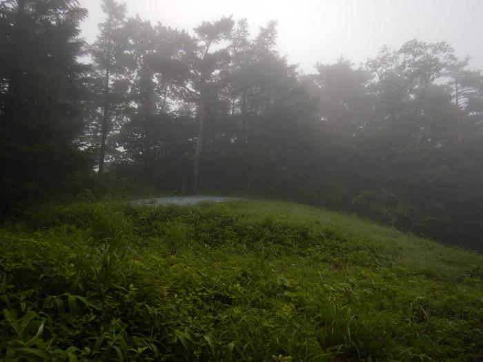 青麻山(36回目)・パラコース ~ 2019年6月20日_f0170180_11263427.jpg