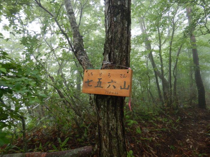 青麻山(36回目)・パラコース ~ 2019年6月20日_f0170180_11310670.jpg