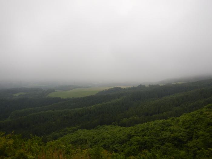 青麻山(36回目)・パラコース ~ 2019年6月20日_f0170180_11375607.jpg