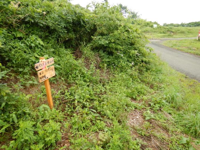 青麻山(36回目)・パラコース ~ 2019年6月20日_f0170180_11404320.jpg