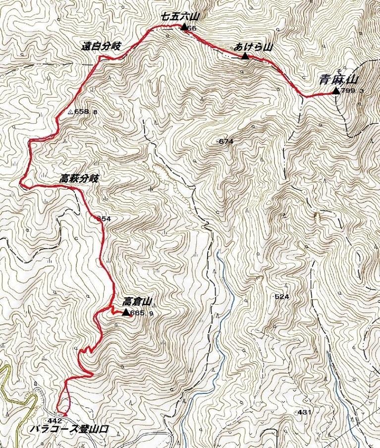 青麻山(36回目)・パラコース ~ 2019年6月20日_f0170180_22450099.jpg