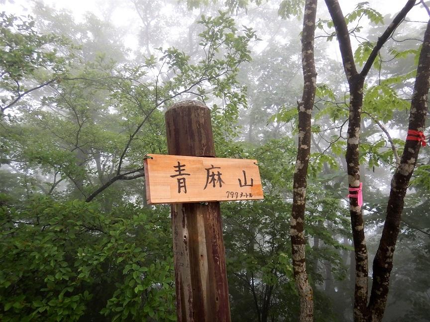 青麻山(36回目)・パラコース ~ 2019年6月20日_f0170180_23013407.jpg