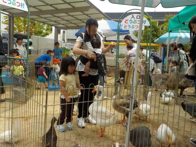 1日動物園_c0197584_15042263.jpg