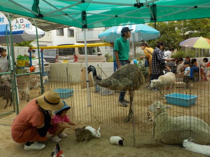 1日動物園_c0197584_15061746.jpg