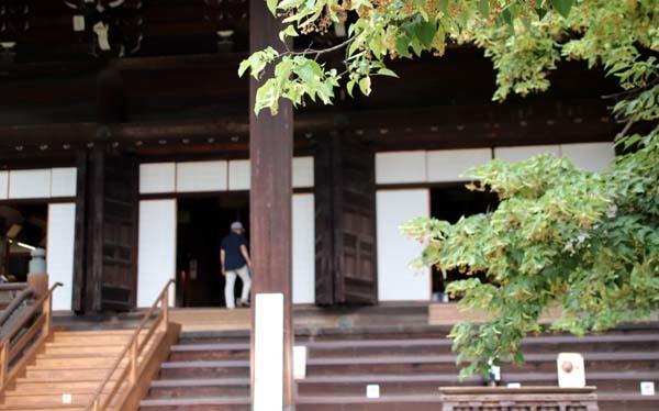 沙羅双樹の花が咲いた 真如堂_e0048413_21220616.jpg