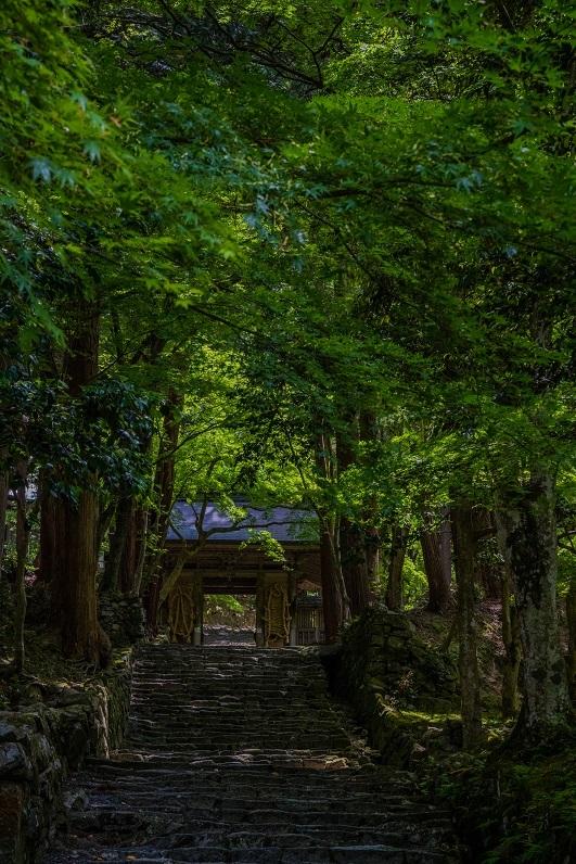 百済寺_e0363038_15142110.jpg