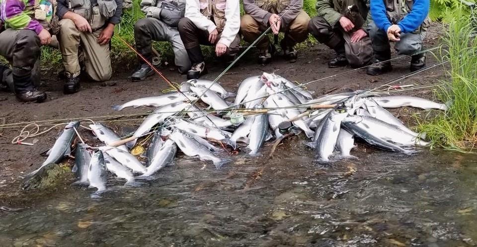 釣りシーズン到来_b0135948_05451353.jpg