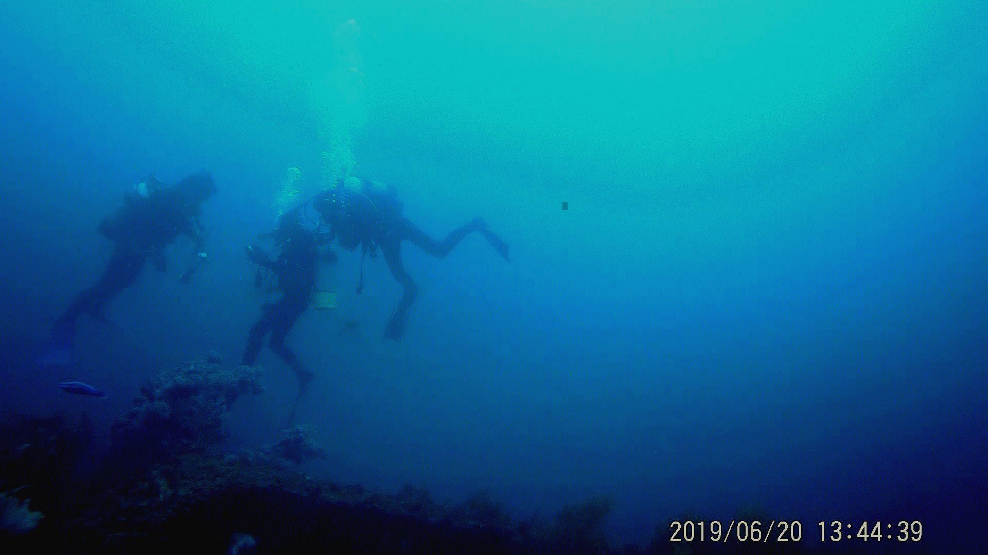 0621  波佐間人工魚礁研究会 6月20日_b0075059_15494754.jpg