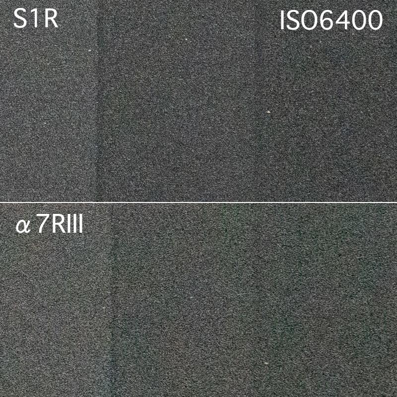 2019/06/21 LUMIX S1R vs α7RIII:高ISOノイズはどうだ?_b0171364_12265163.jpg