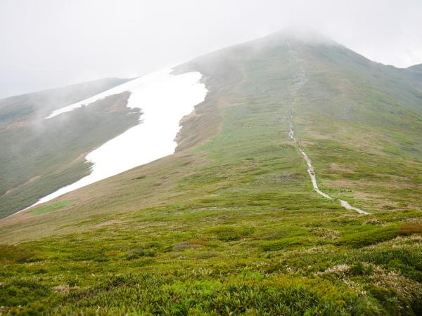 初夏の平標山から仙の倉へ_a0351368_23374454.jpg