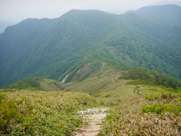 初夏の平標山から仙の倉へ_a0351368_23380202.jpg