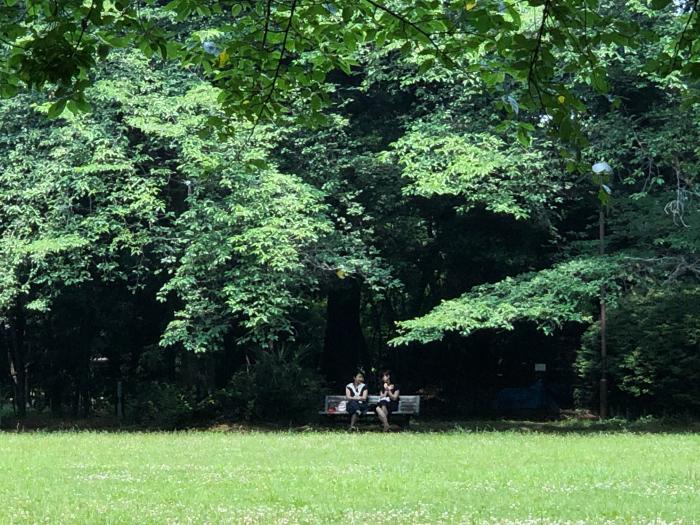 緑陰の午餐。_b0022268_20594582.jpg