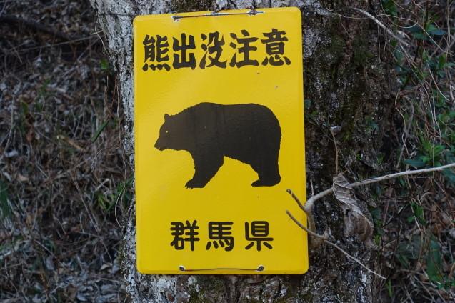 西伊豆に熊_e0232277_11111691.jpg