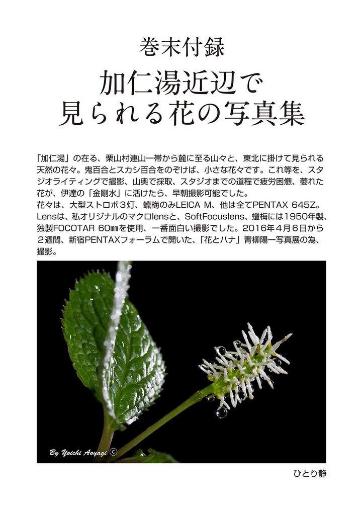 青柳陽一「岩魚が呼んだ」 電子書籍で新発売!_c0180686_16212088.jpg