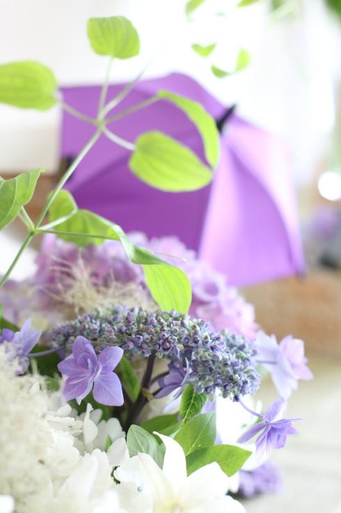 紫陽花のおもてなし_f0306287_12132689.jpg