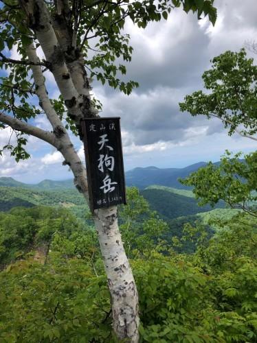 花の定山渓天狗岳、2019.6.18ー同行者からの写真ー_f0138096_21080906.jpg