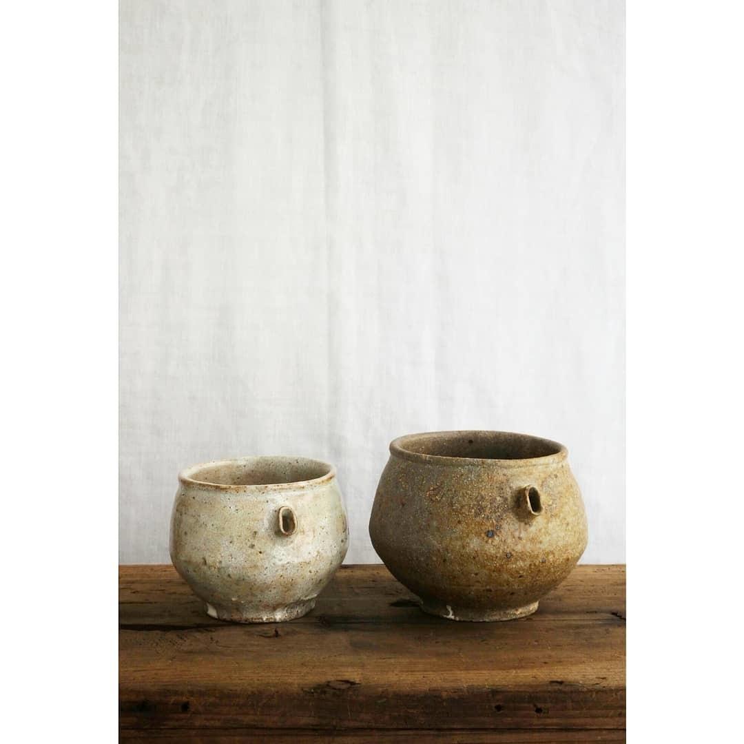 煎茶と花 - 茶器の章2 -_f0351305_22391766.jpg