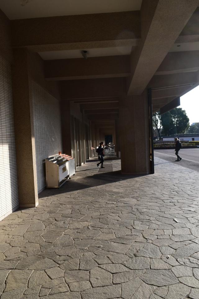 東京国立博物館東洋館(昭和モダン建築探訪)_f0142606_07384351.jpg