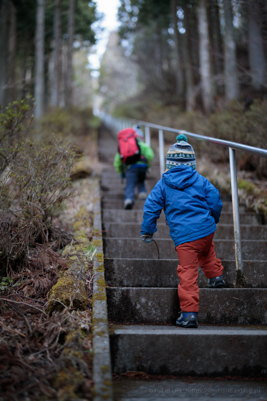 ちびっ子兄弟のチャレンジ春登山「石割山~平尾山」_c0369219_12024288.jpg