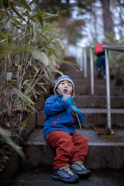 ちびっ子兄弟のチャレンジ春登山「石割山~平尾山」_c0369219_12290313.jpg