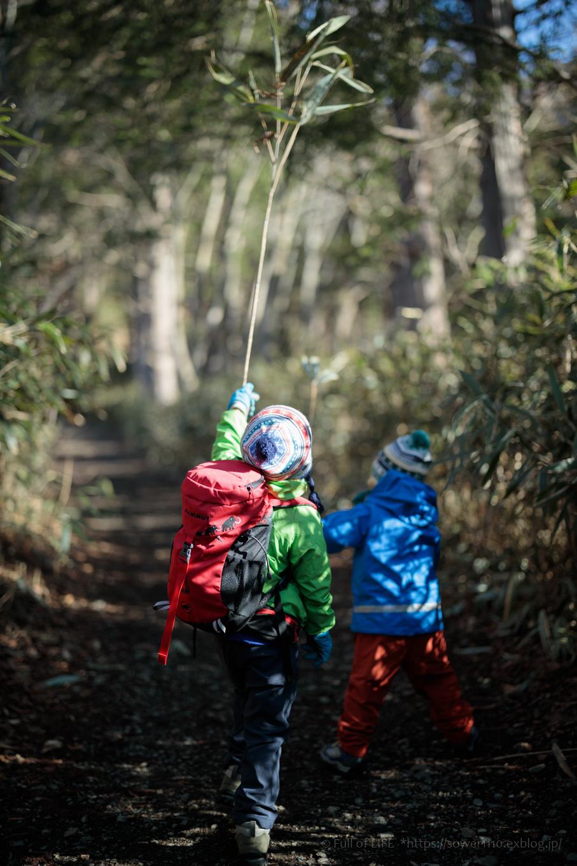 ちびっ子兄弟のチャレンジ春登山「石割山~平尾山」_c0369219_12371790.jpg