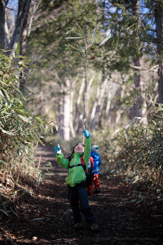 ちびっ子兄弟のチャレンジ春登山「石割山~平尾山」_c0369219_12525190.jpg