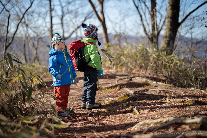 ちびっ子兄弟のチャレンジ春登山「石割山~平尾山」_c0369219_13313555.jpg