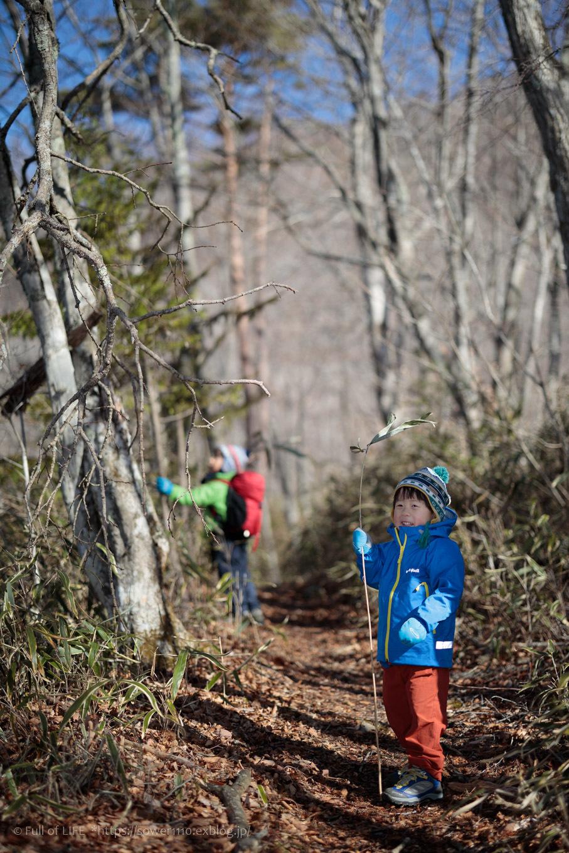 ちびっ子兄弟のチャレンジ春登山「石割山~平尾山」_c0369219_13340897.jpg
