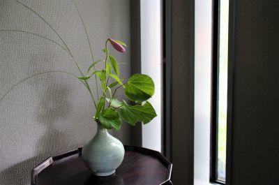 花だより ササユリ_a0279848_14012710.jpg