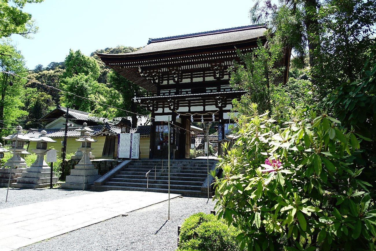 松尾大社 社殿(その1)_c0112559_07310074.jpg