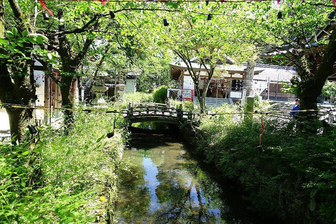 松尾大社 社殿(その1)_c0112559_07341095.jpg