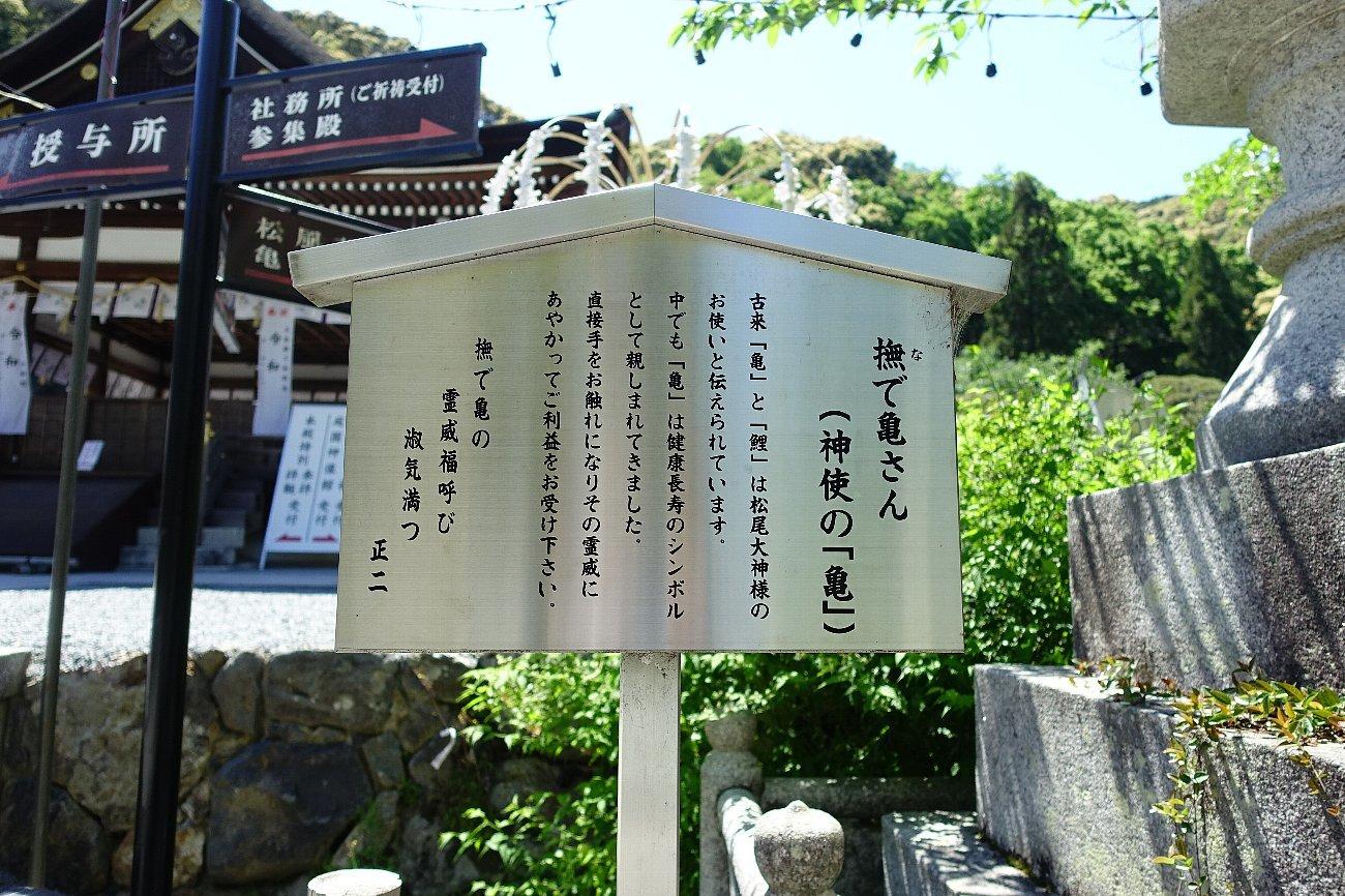 松尾大社 社殿(その1)_c0112559_07355721.jpg