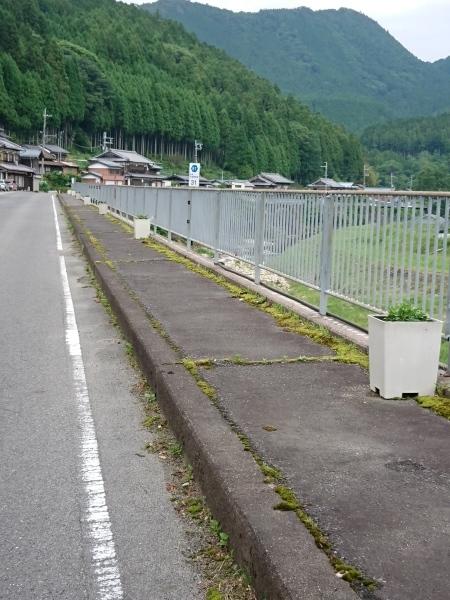 2019/6/22 花街道づくり_a0277170_11495096.jpg