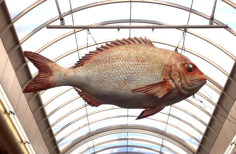 黒門市場の魚_b0057679_09075367.jpg