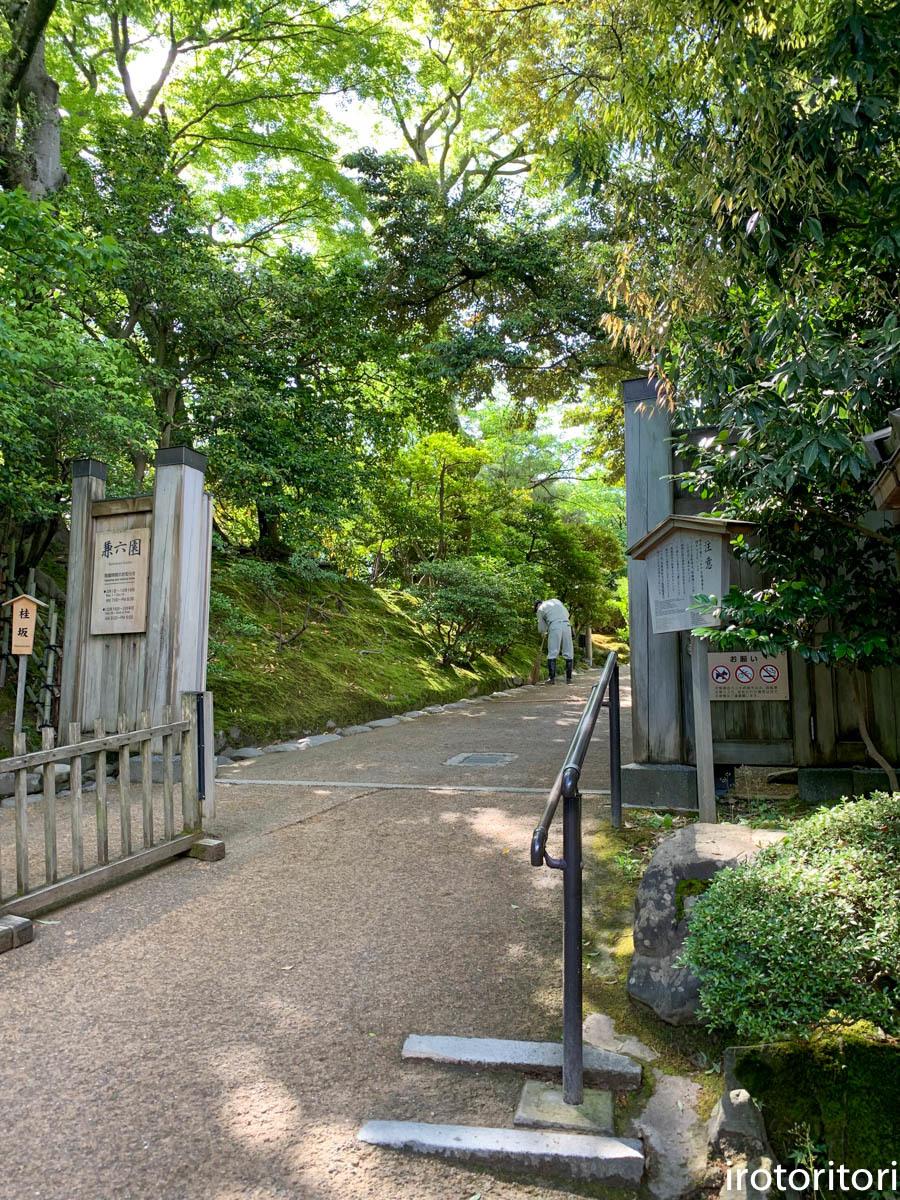 金沢旅日記 その2  (ヤマガラ)  2019/05/29_d0146592_00370935.jpg