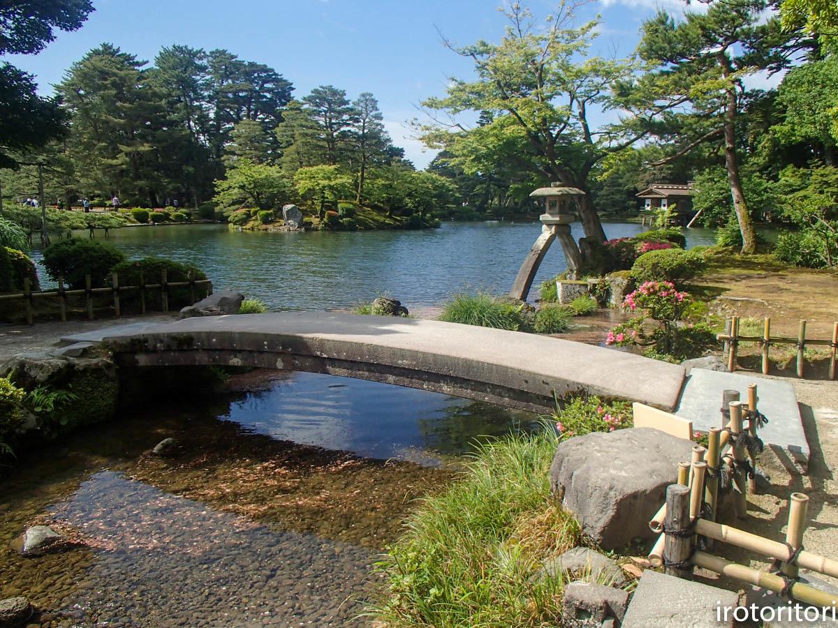 金沢旅日記 その2  (ヤマガラ)  2019/05/29_d0146592_00381455.jpg
