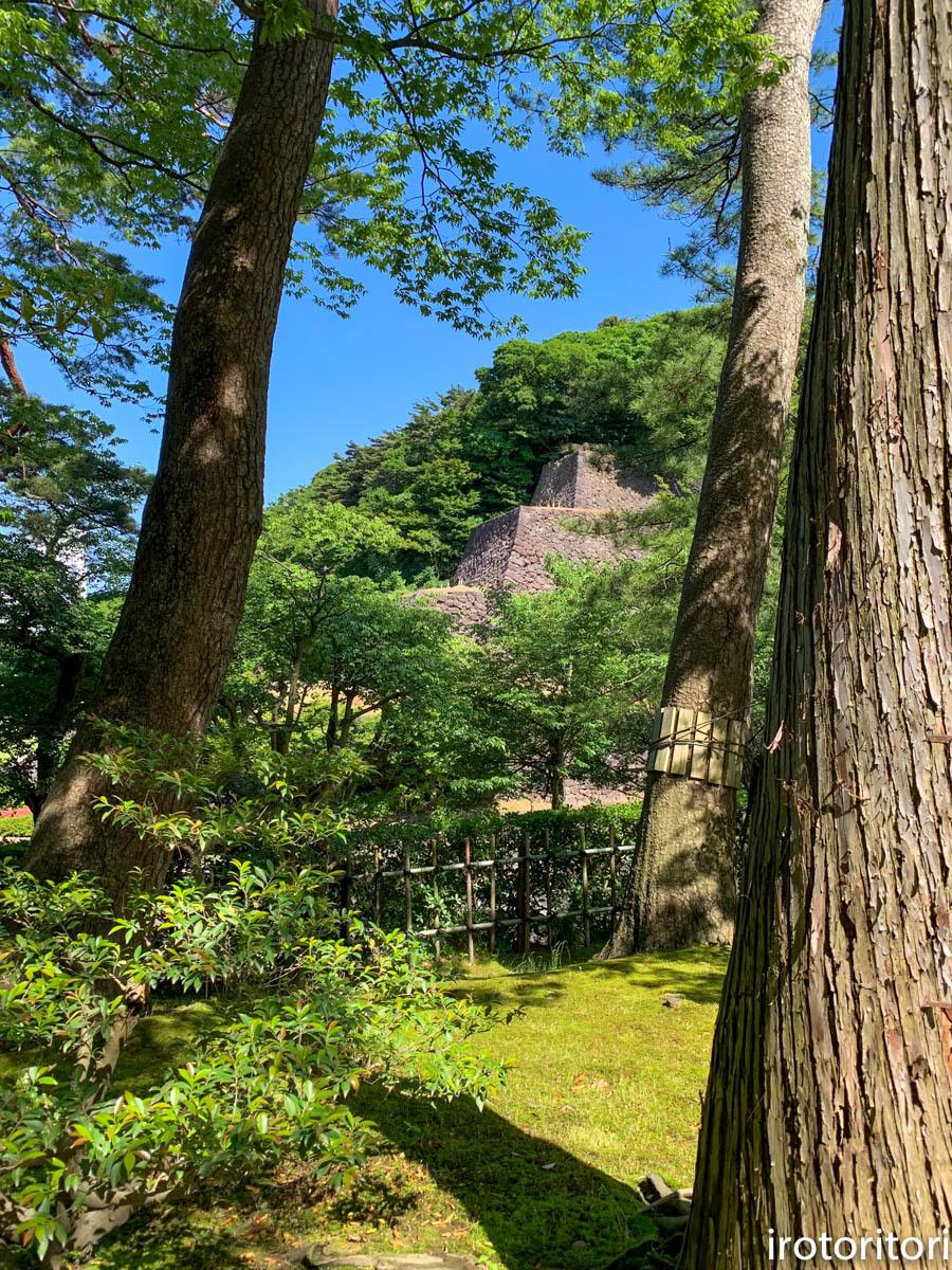 金沢旅日記 その2  (ヤマガラ)  2019/05/29_d0146592_00392756.jpg