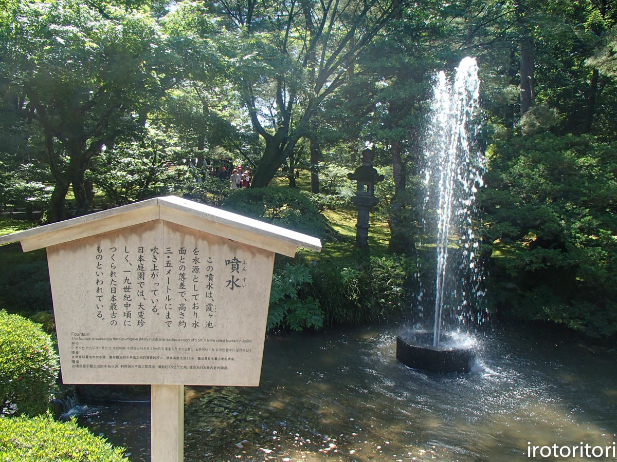 金沢旅日記 その2  (ヤマガラ)  2019/05/29_d0146592_00394315.jpg