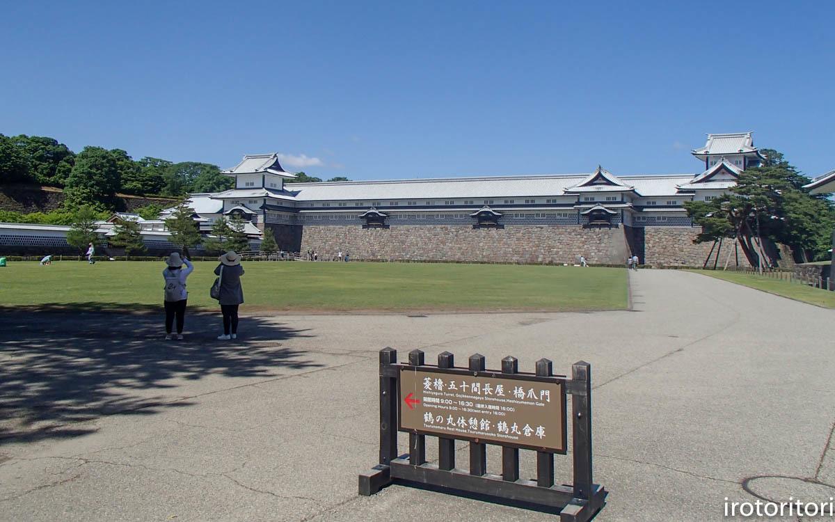 金沢旅日記 その3  (カワラヒワ)  2019/05/30_d0146592_23090625.jpg