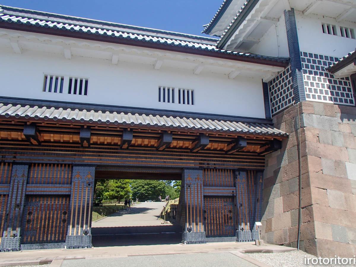 金沢旅日記 その3  (カワラヒワ)  2019/05/30_d0146592_23092435.jpg
