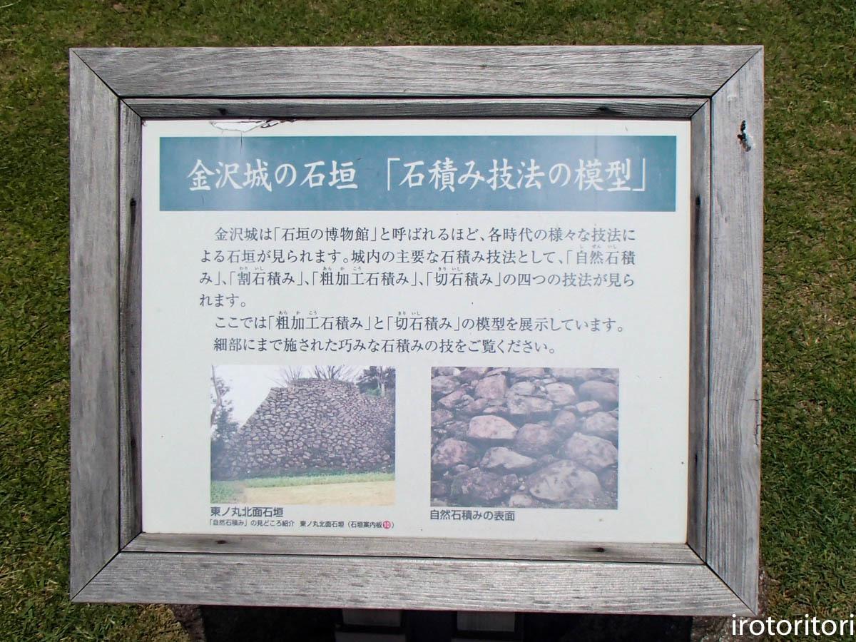 金沢旅日記 その3  (カワラヒワ)  2019/05/30_d0146592_23354499.jpg