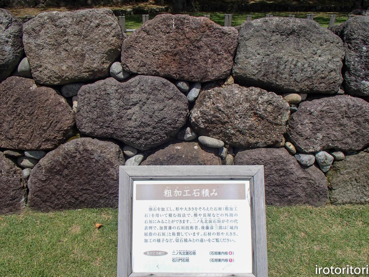 金沢旅日記 その3  (カワラヒワ)  2019/05/30_d0146592_23355747.jpg