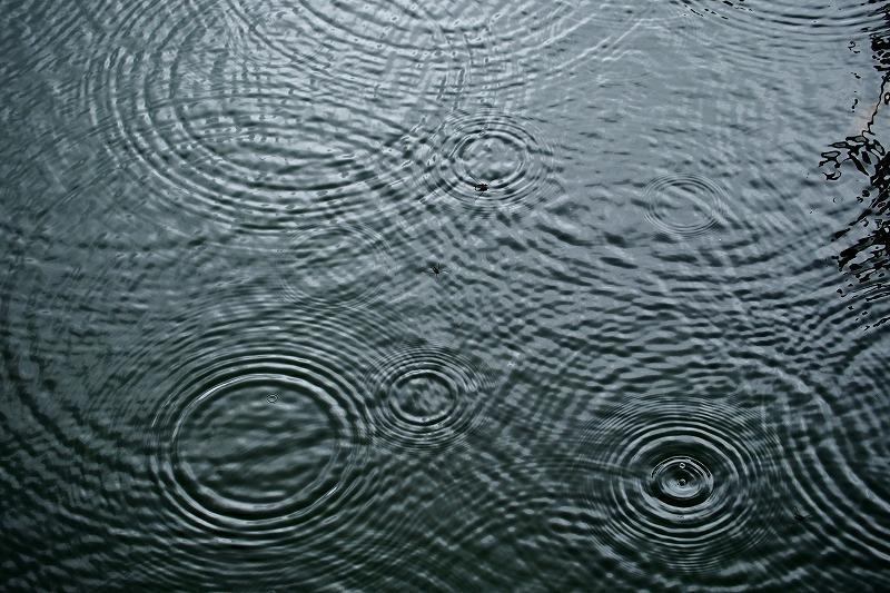 雨の中で_e0348392_18245707.jpg