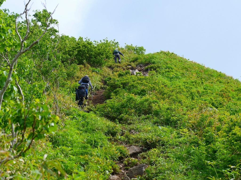 尻別岳と橇負山に樽前山お花畑、2019.6.20_f0138096_16040192.jpg