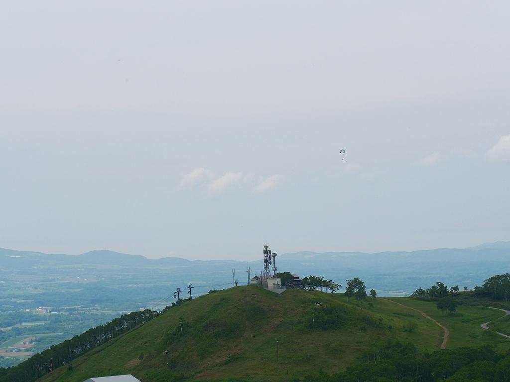 尻別岳と橇負山に樽前山お花畑、2019.6.20_f0138096_16050107.jpg