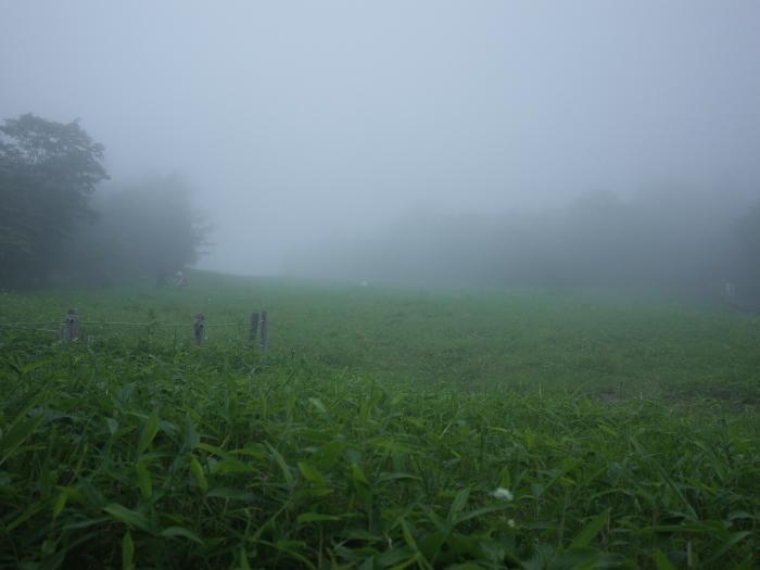 霧の霧降高原_e0276411_19453047.jpg
