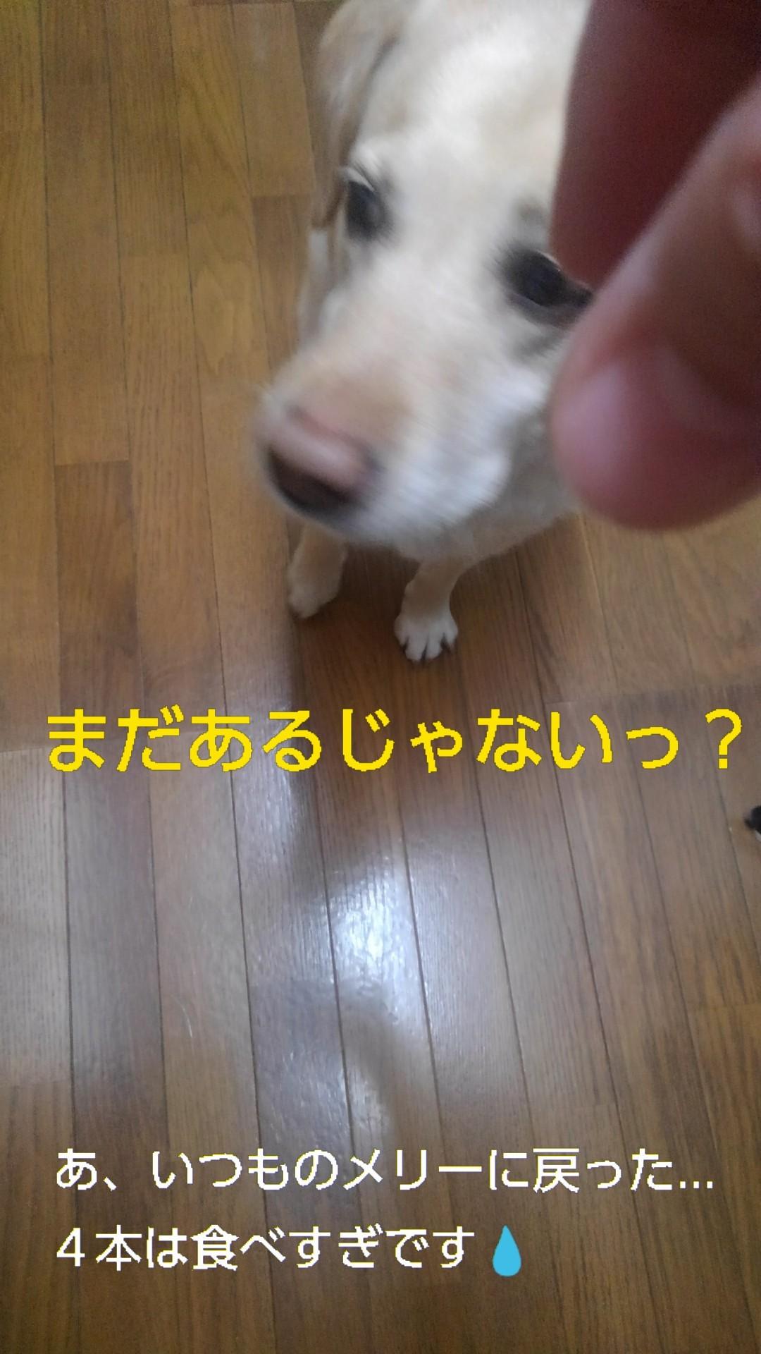 b0339522_21044145.jpg
