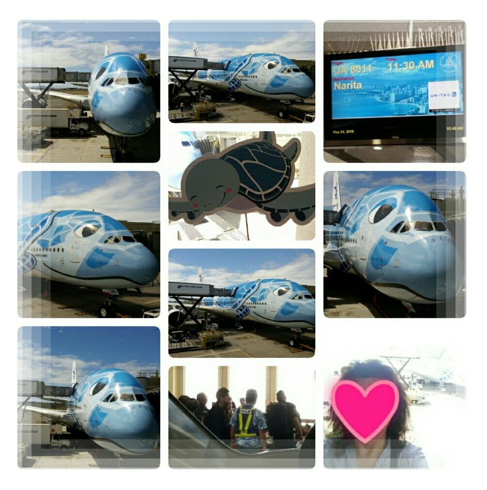2019年5月『エアバスA380就航・日本帰国便に乗る ホノルル四日間の旅』⑦_d0219834_15150177.jpg