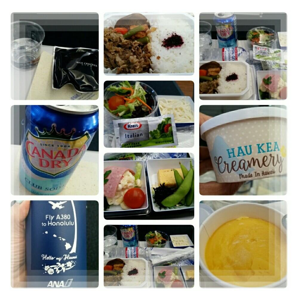 2019年5月『エアバスA380就航・日本帰国便に乗る ホノルル四日間の旅』⑦_d0219834_15561928.jpg
